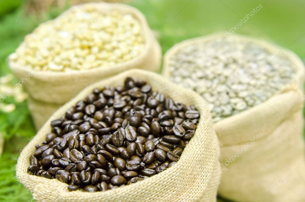 Coffee beans on wood background with soy beans