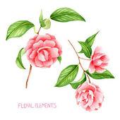 Květiny, camellia, ručně vyráběné, barevné květinové kolekce s akvarelem, květ, nať