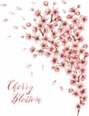 Photo Watercolor Cherry blossom card