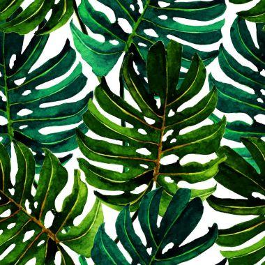 palm, seamless pattern