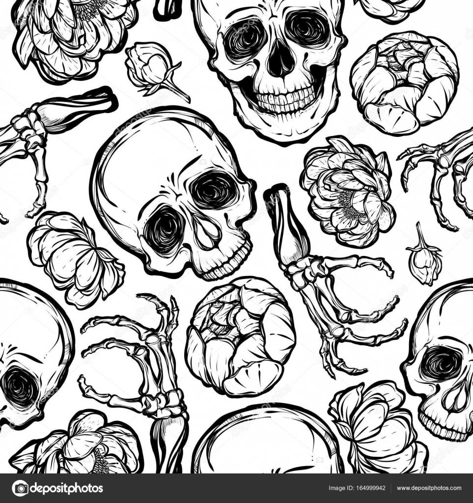 Schädel, Pfingstrose, Knochen-illustration — Stockvektor © HikaruD88 ...