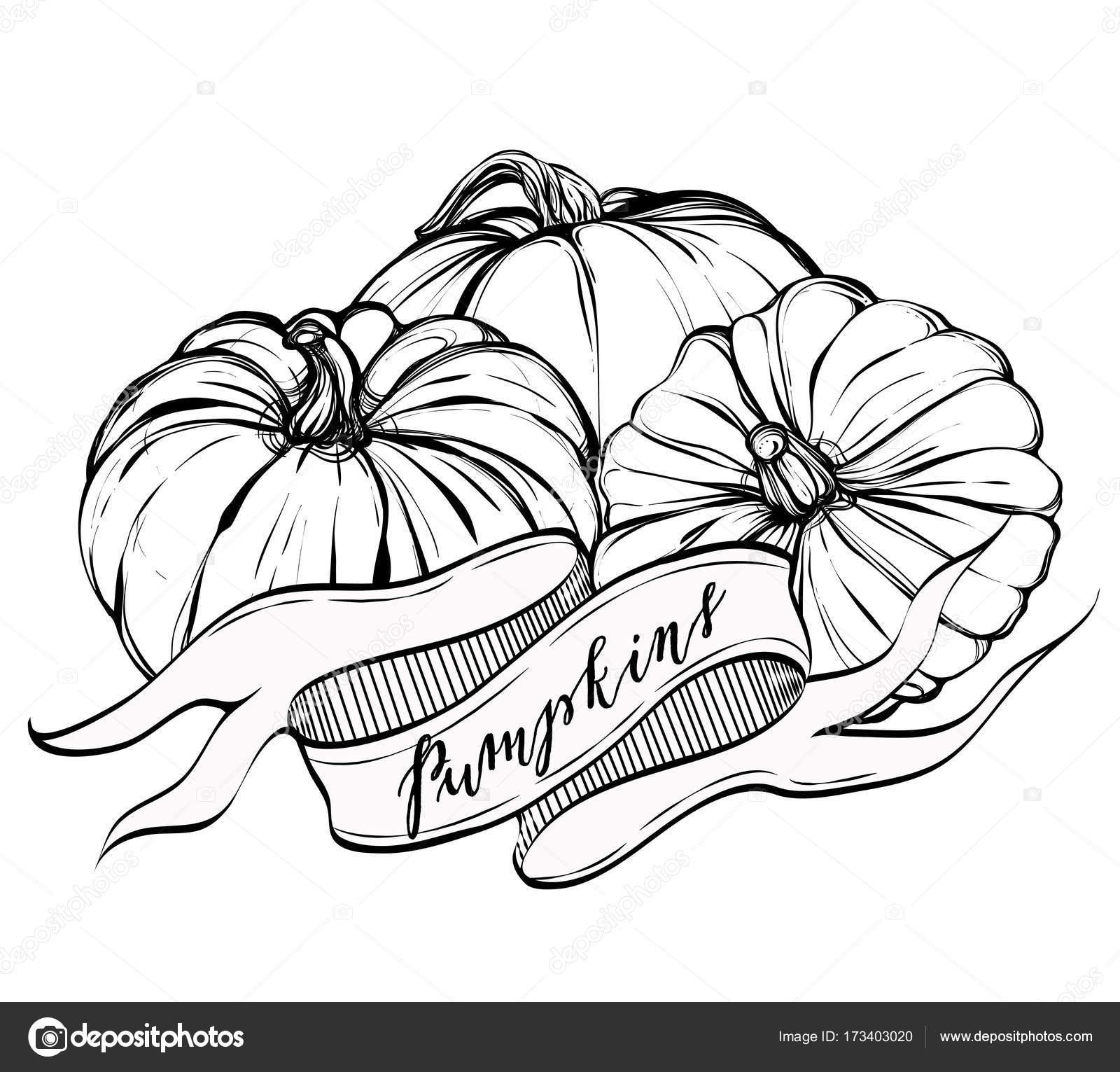 Schön Herbst Kürbis Färbung Seite Ideen - Beispiel Anschreiben für ...