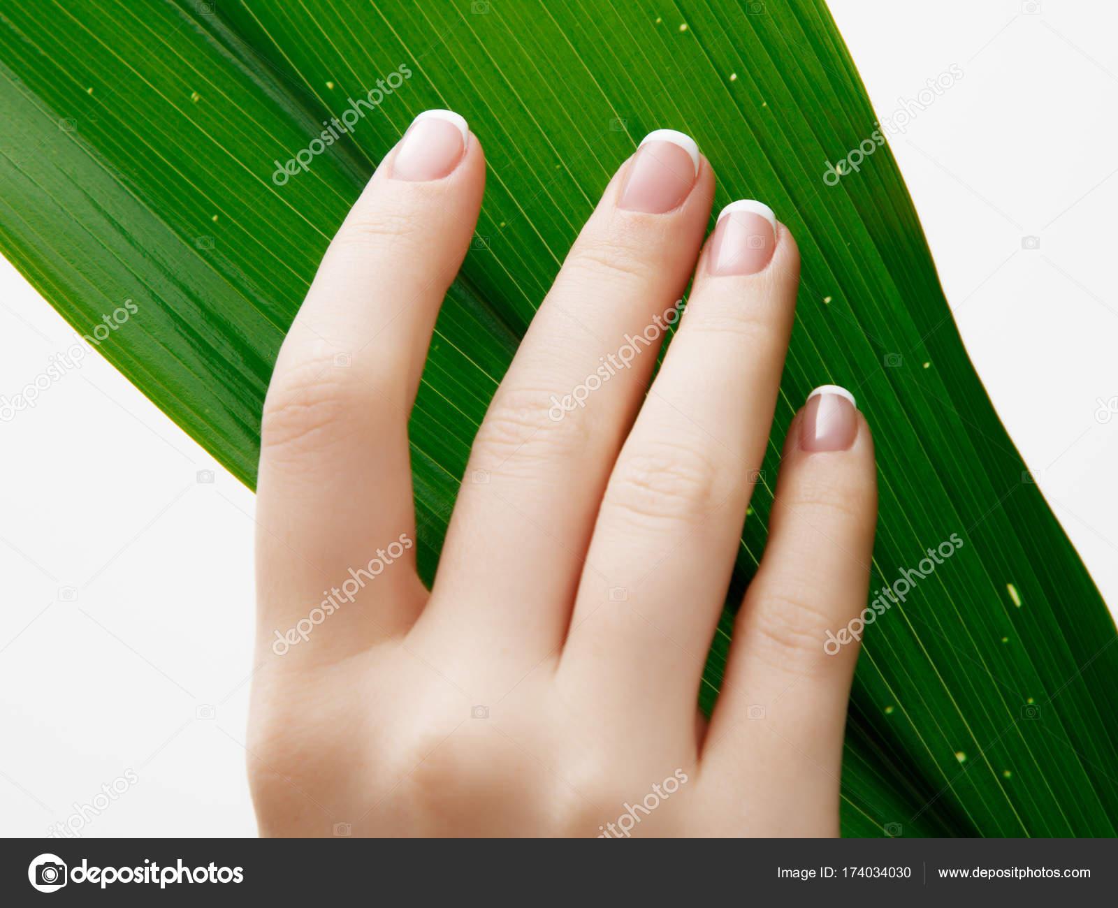 Cuidado de la belleza. Delicadas manos con manicura sosteniendo una ...