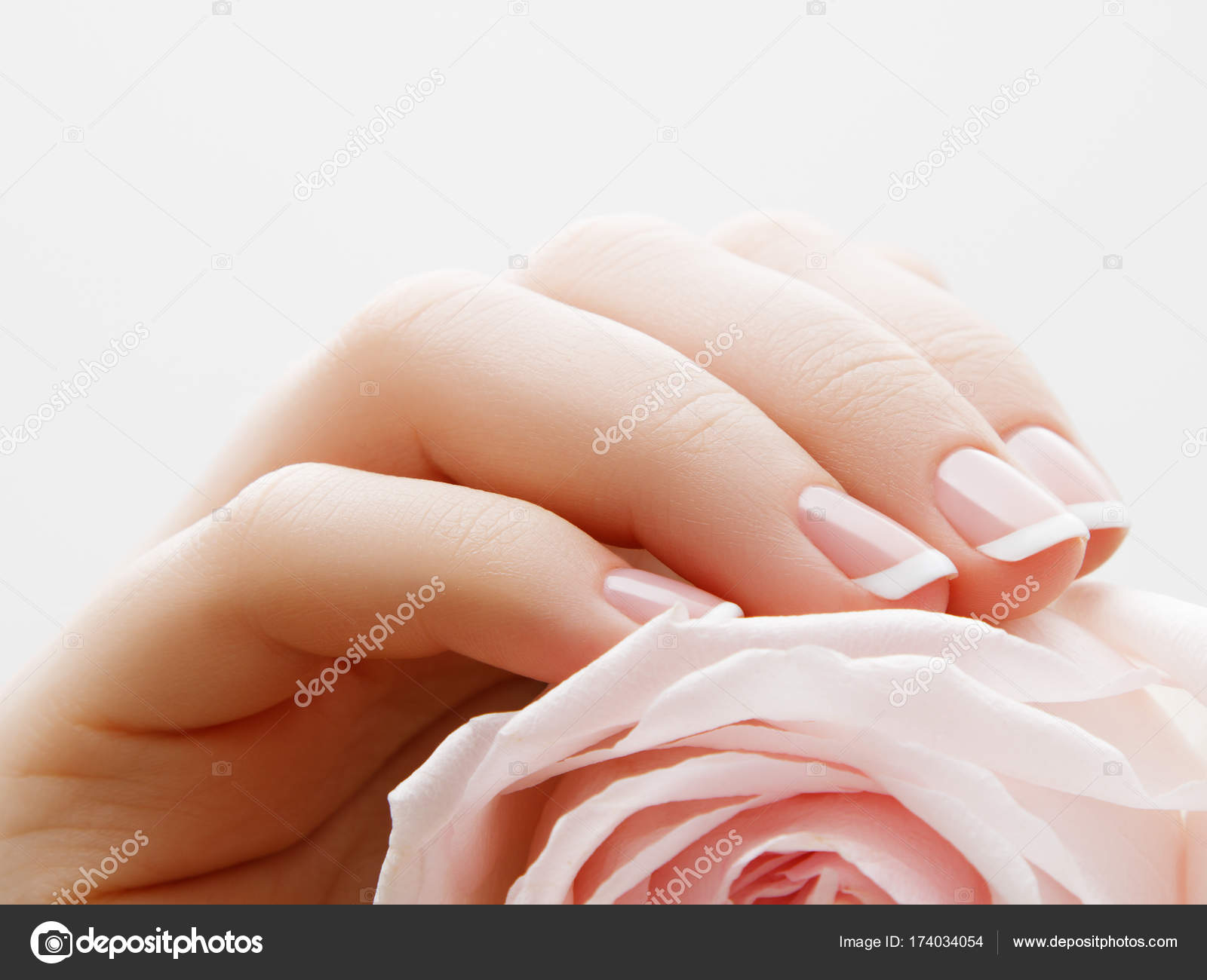 Soft selective focus beauty nail care delicate hands with french beauty nail care delicate hands with french manicure holding a pink petals close up on flower background beautiful nails close up great idea for the izmirmasajfo