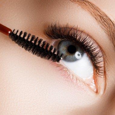 Beautiful macro shot of female eye with extreme long eyelashes and natural makeup. Perfect shape makeup and long lashes. Cosmetics and make-up. Closeup macro shot of fashion eyes visage