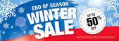 Fotografie Winter-Verkauf-banner