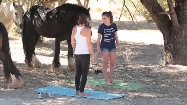 Dvě dívky snaží dělat jógu, obklopen koně