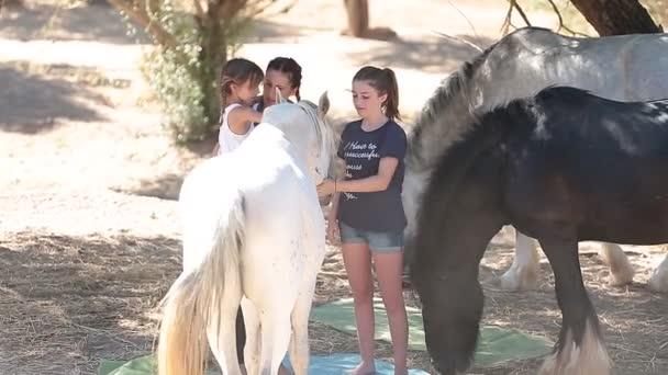 koně, holka, farma, zvíře, dítě, ranč, příroda, léto, zábava, podzim, krásné, v přírodě, Rodina, hra, málo, šťastný, hraní, děti, venkova, lidi, pastviny, krmiva, roztomilý, pole, lásku, pet, venkov, friendstwo dívek a dívka uprostřed koně