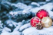 Vánoční koule na stromeček. Denní světlo. Prostor pro text