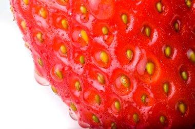 Strawberry macro seeds closeup