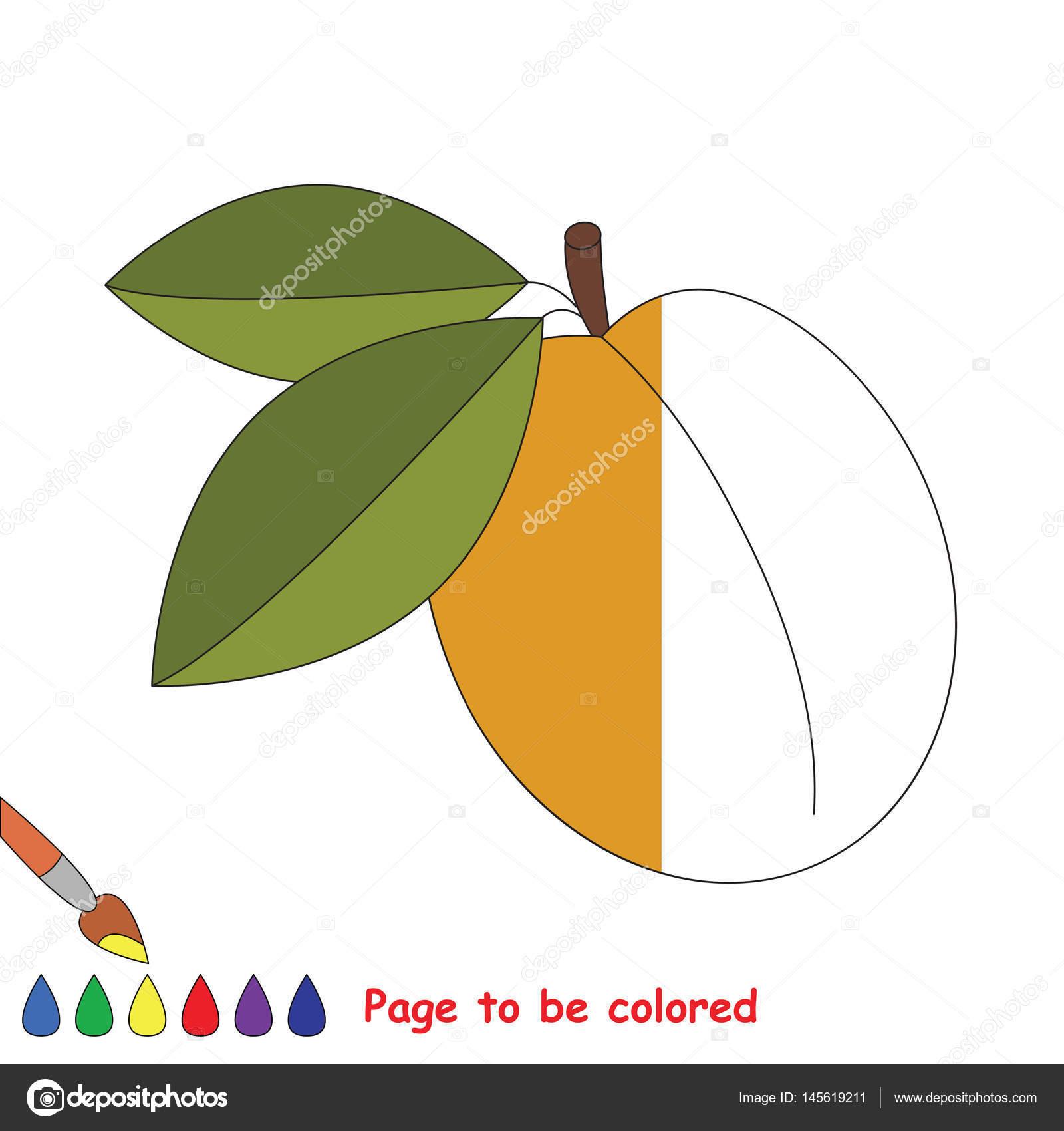 Renkli Sayfa Stok Vektör Annamikhailova 145619211