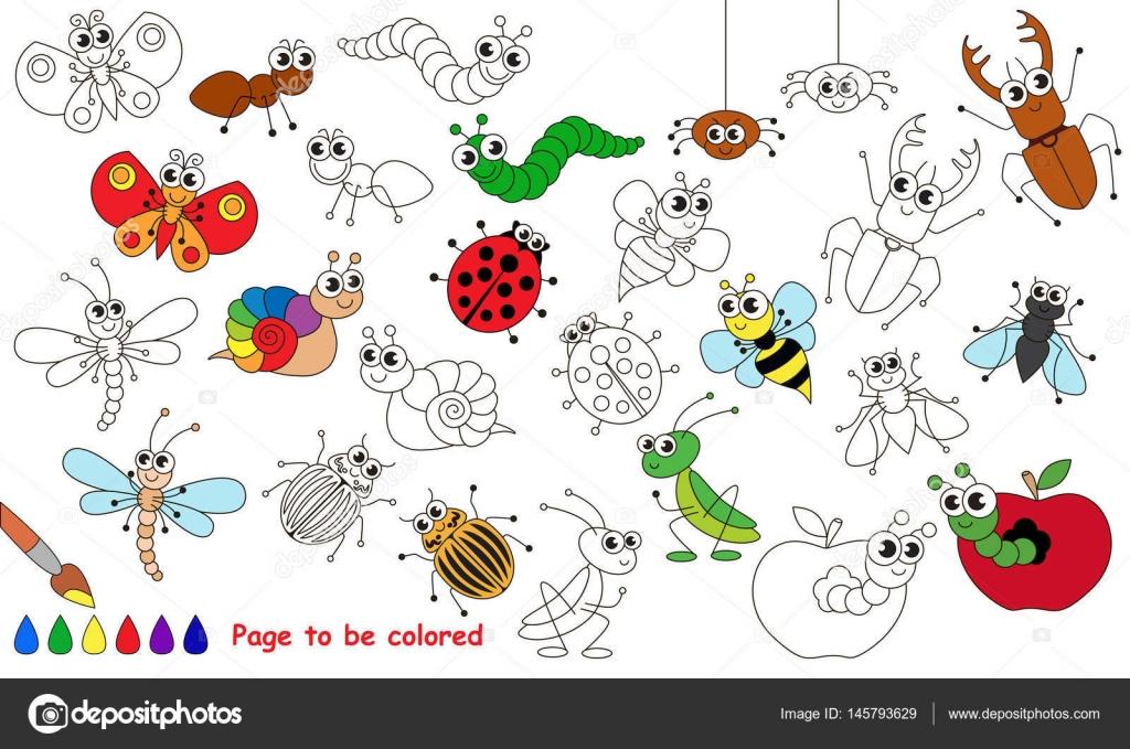 Dibujos De Insectos Para Colorear Para Ninos: Conjunto De Dibujos Animados Graciosos Insectos. Página
