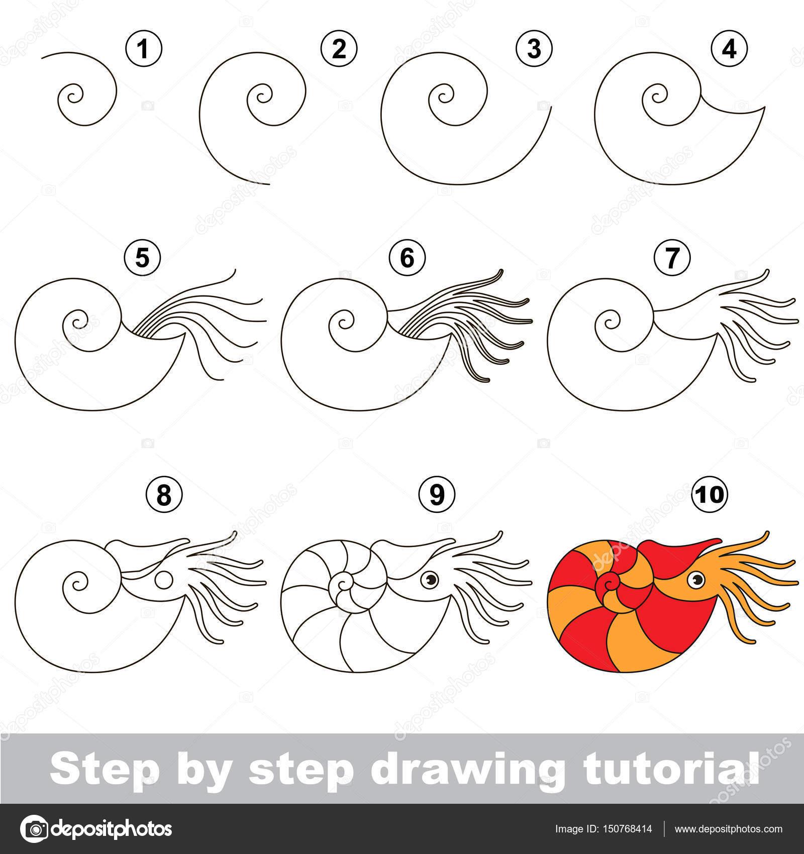 Como Se Dibuja Una Estrella De Mar Paso A Paso Tutorial De Dibujo