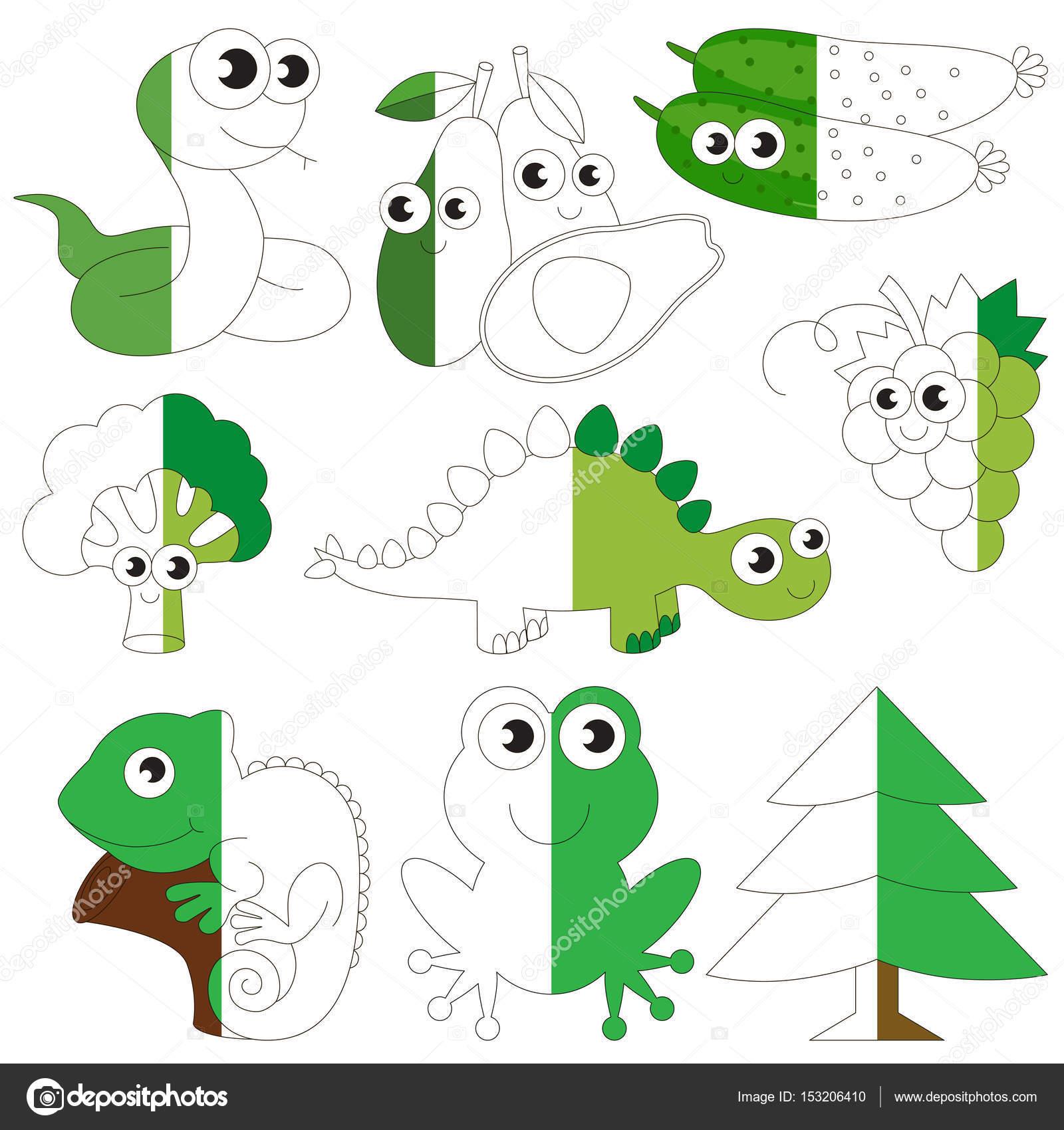 Imágenes Animales De Color Verde Animales De Color Verde Frutas