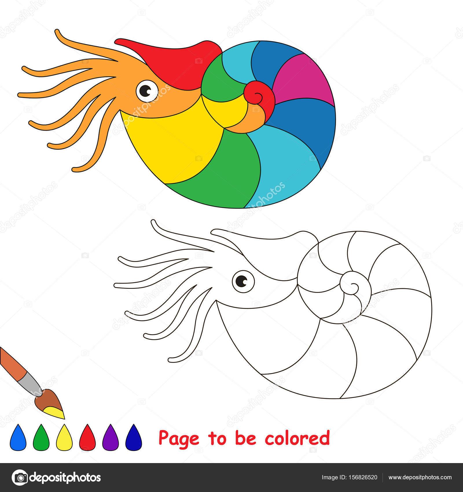 Nautilus Arco Iris Para Colorear Libro Para Colorear Para