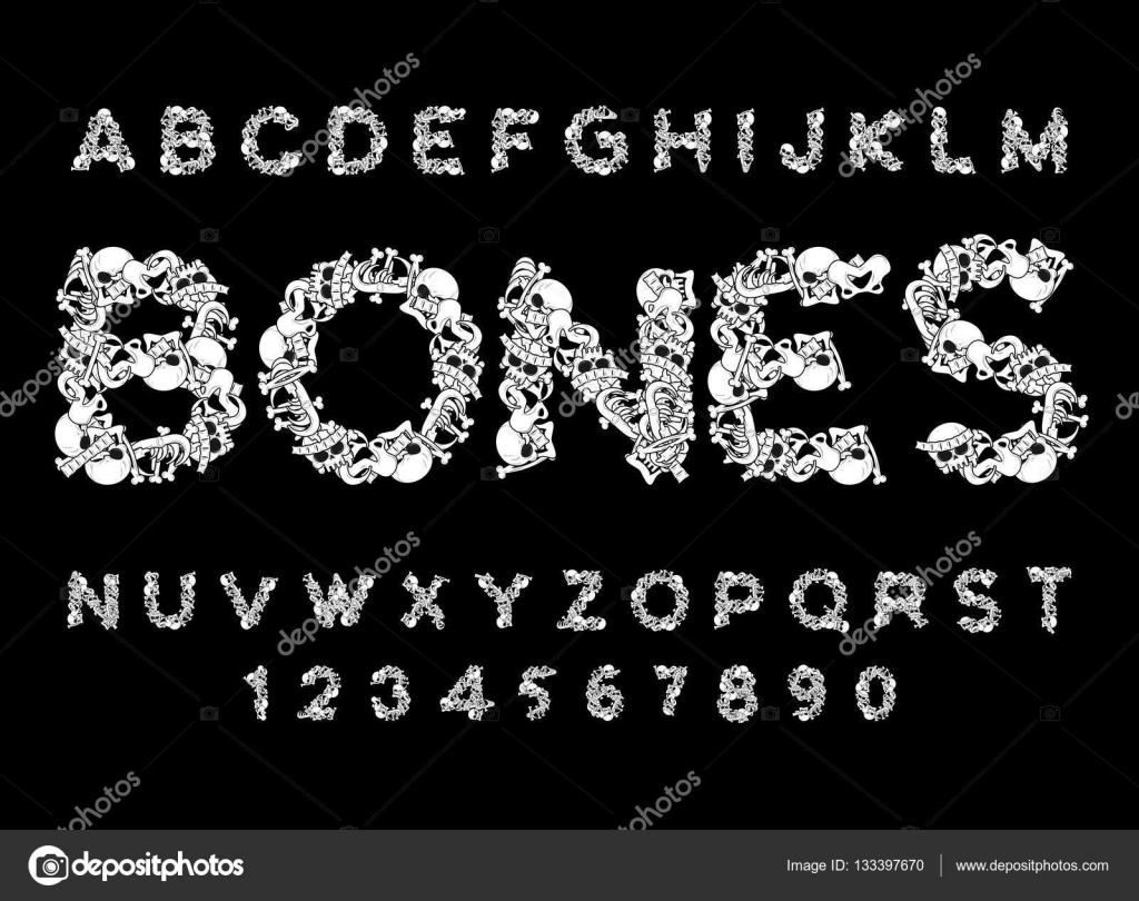 Bones Font Letters Anatomy Skeleton Abc Skull And Spine Jaw