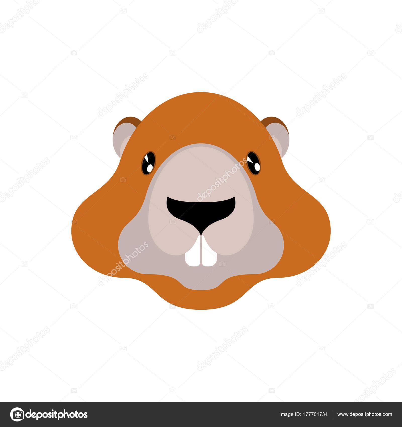 Retrato de marmota aislado. Cabeza de roedor silvestre. Ilustración ...