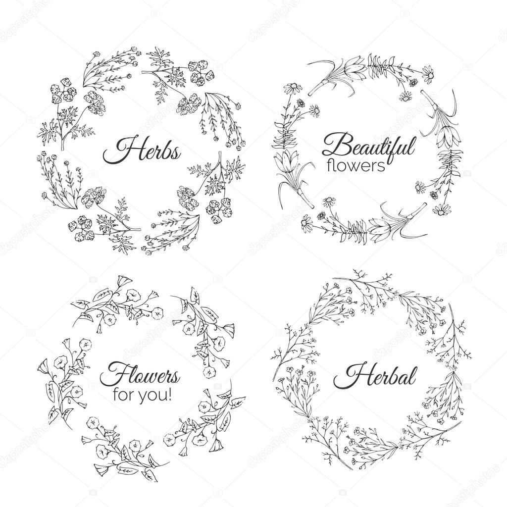 ハーブのイラスト花のフレーム ストックベクター Kamimi 129459242