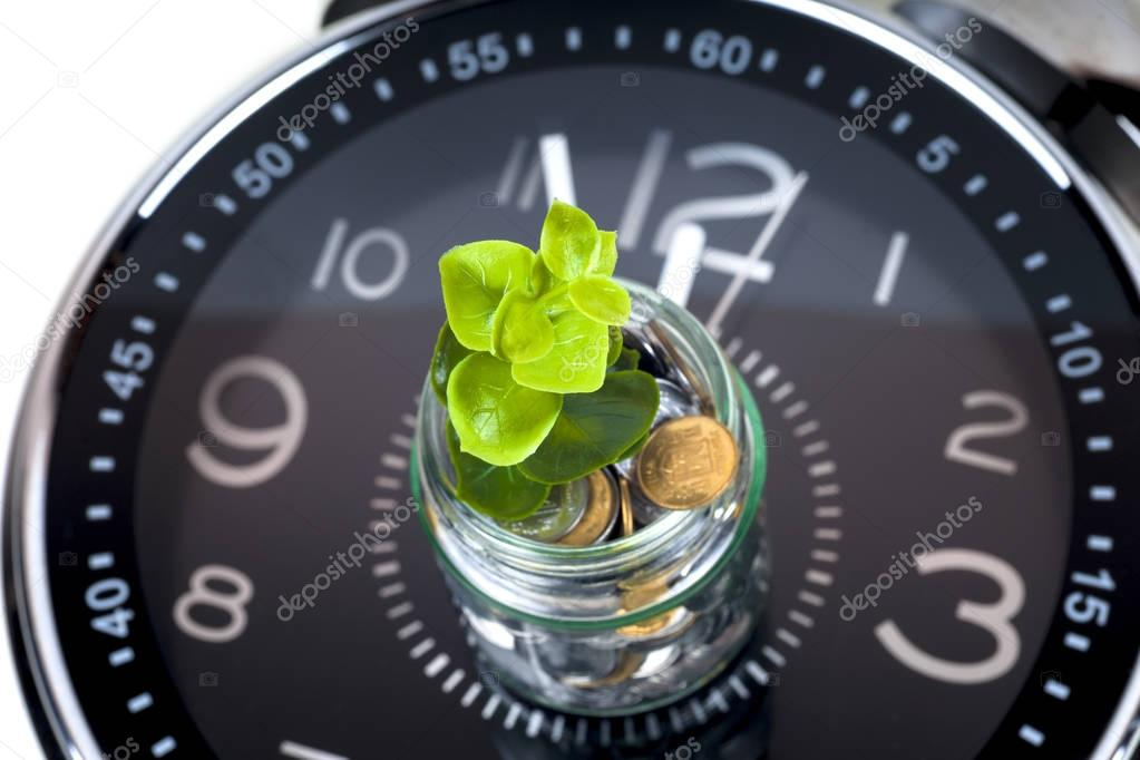 coins with plant and clock, isolated on white background.