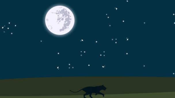 Fut végig egy varázslatos éjszakát az afrikai oroszlán