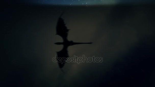 Drak přes bouřlivé noční obloha