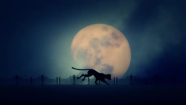 Toulavá kočka běžící na pozadí Full Moon Rising