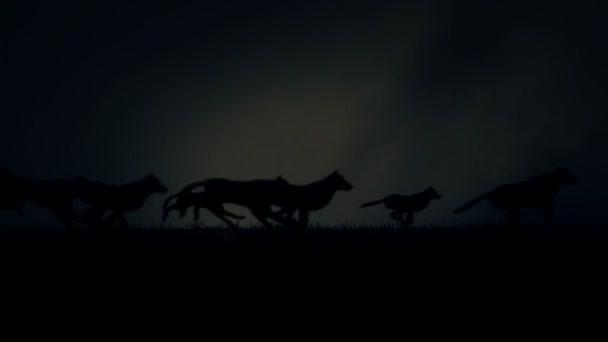 Velká smečka vlků běží na temné bouřlivé noci