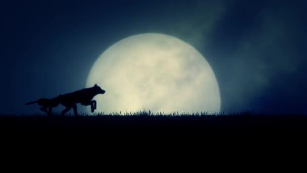 Egy csomag a farkasok a felkelő teli Hold háttérben futó
