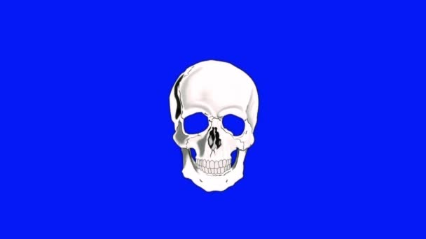 Skull Burning in Flames to Ashes on a Blue Screen Background