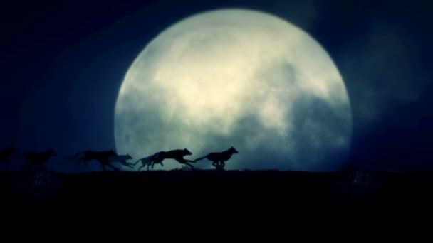 Smečka vlků běží na noc úplňku