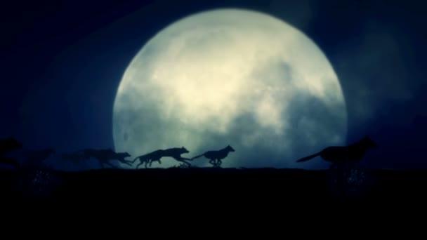 Velká smečka vlků běží na noc úplňku