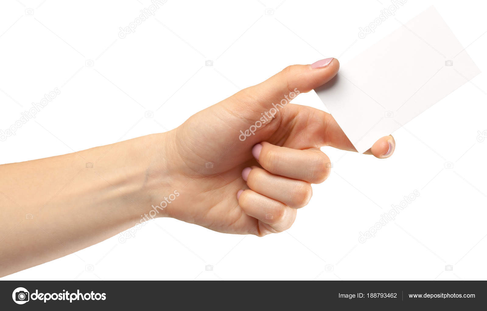 Female Hand Holding Empty Paper Isolated White Background