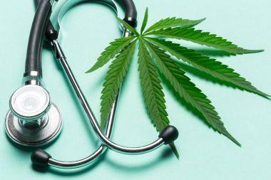 Close up of medical Marijuana on blue background