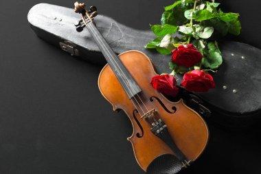 Violin and rose on black background.