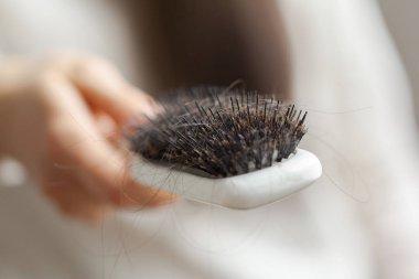 Hair loss on hairbrush close up