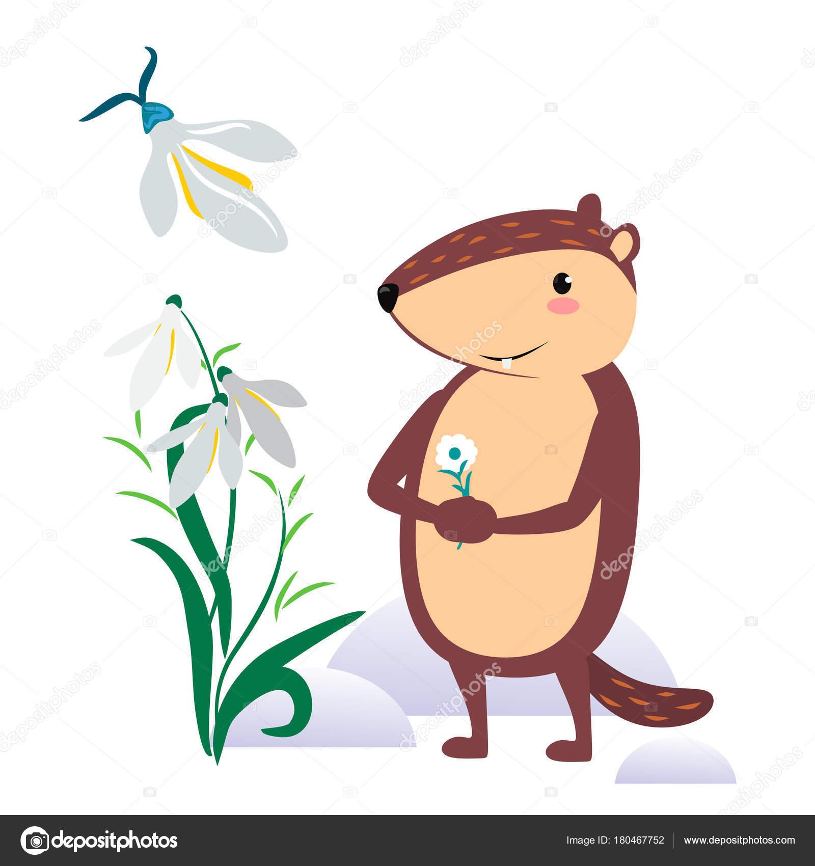 Feliz diseño día de la marmota con Linda marmota sostiene flor ...