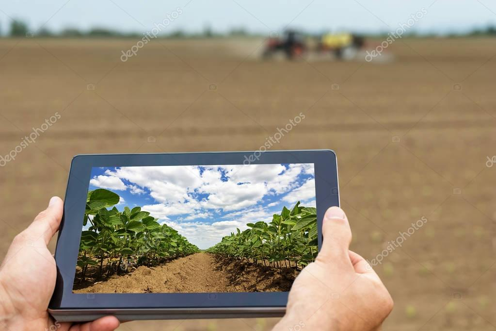 Умное сельское хозяйство Фермер, использующий плантацию сои. Современные агротехнологии , Артикул: 151881764 | Artzakaz.pro