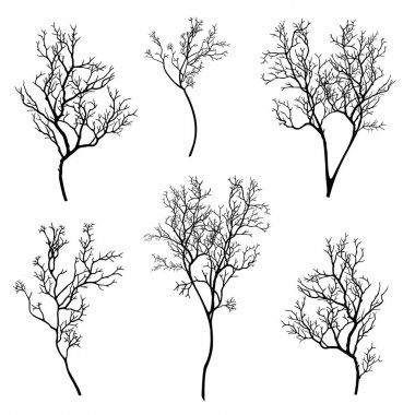 tree branch silhouette set