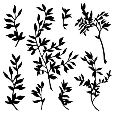 branches silhouette vector set