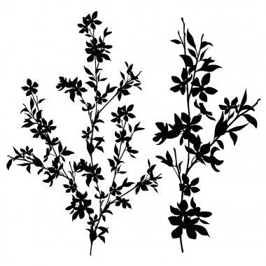 branch silhouette set