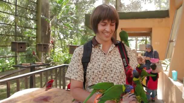 Kuala Lumpur, Malajsie - 03 února 2013. Muž krmení papoušků Lory. Zábavné atrakce pro turisty