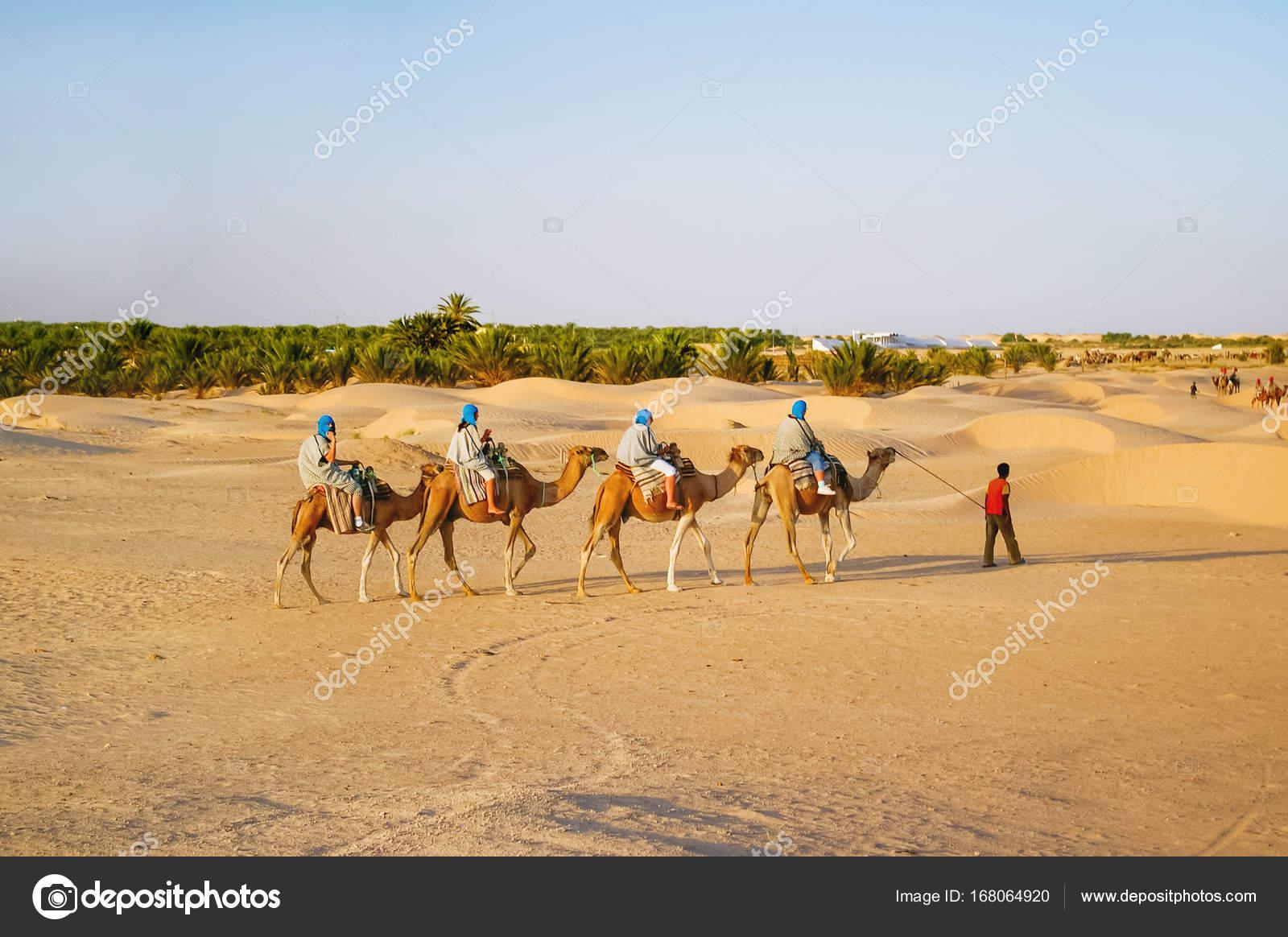 ea48123fab5b Touristen und Beduinen auf Kamelen treffen Sonnenuntergang in der ...