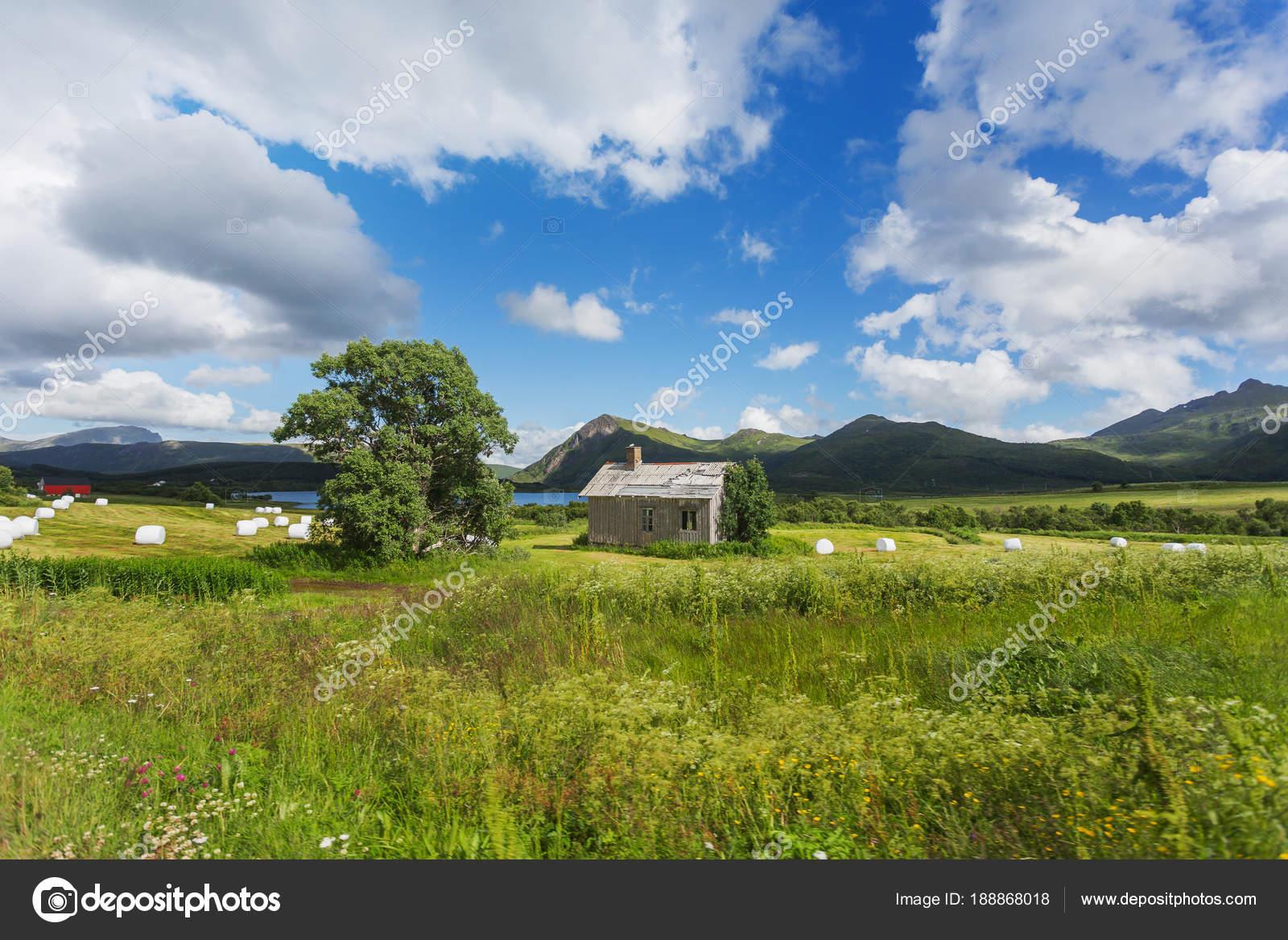 Landschaft aus Wiesen