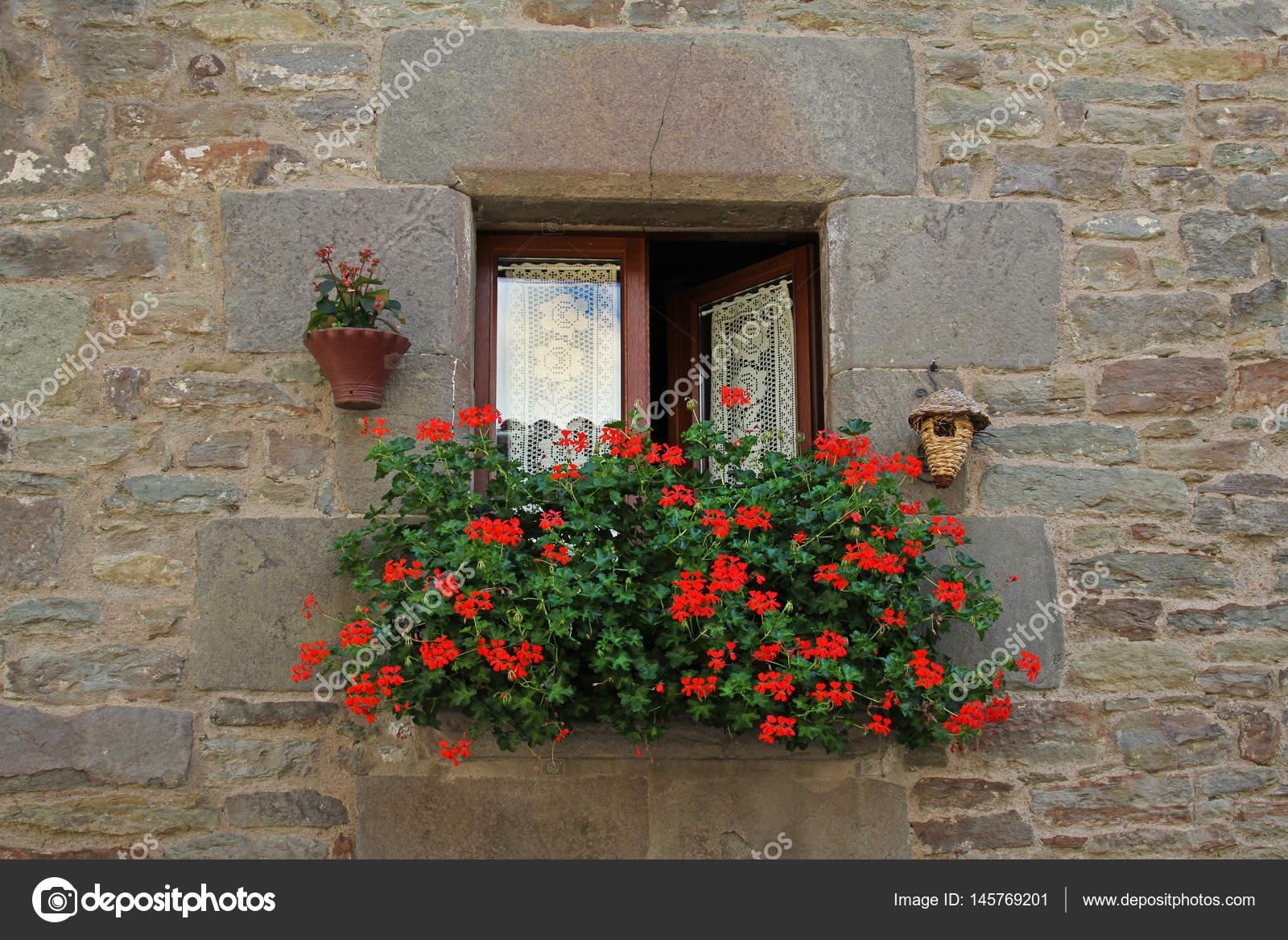 Okno Z Białe Zasłony Birdhouse Wiszące Doniczki I