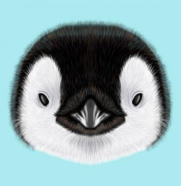 Illustrated portrait of Emperor penguin chick