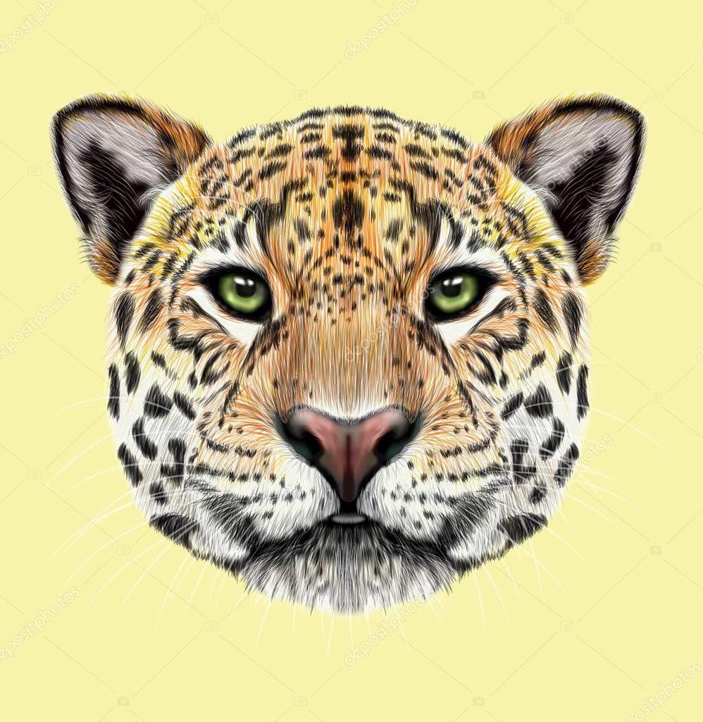 Illustrated portrait of Jaguar