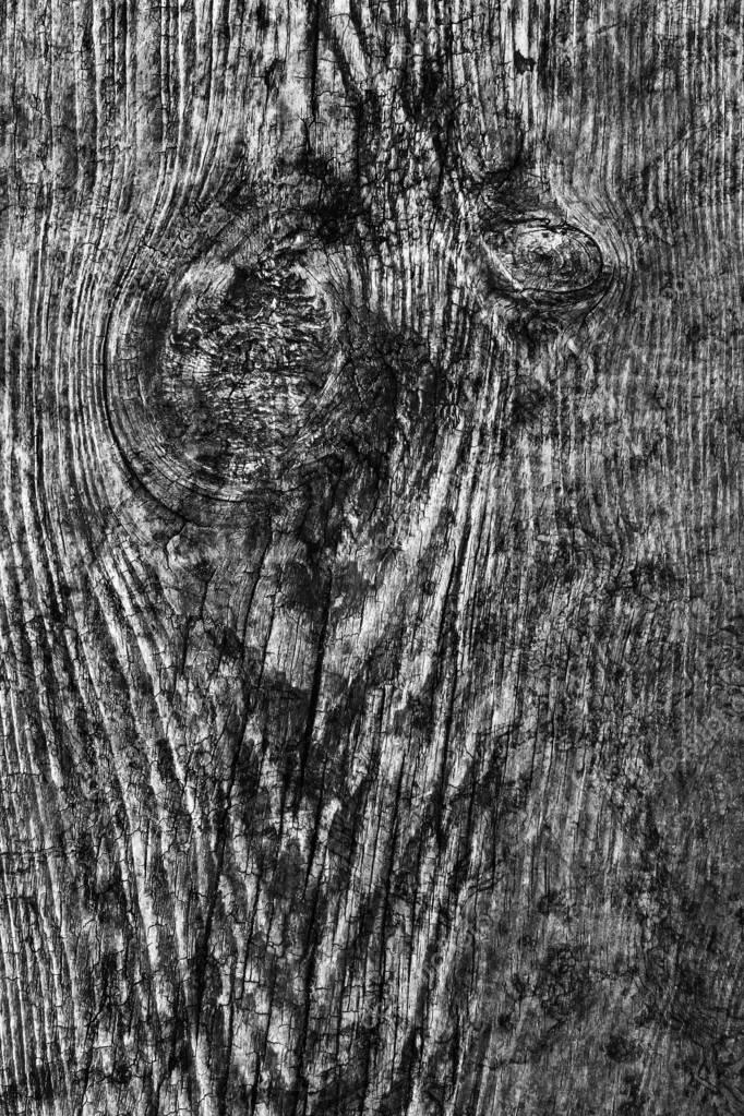 Old Knotted Wood Weathered Rotten Cracked Bleached And Stained Gray Grunge Texture