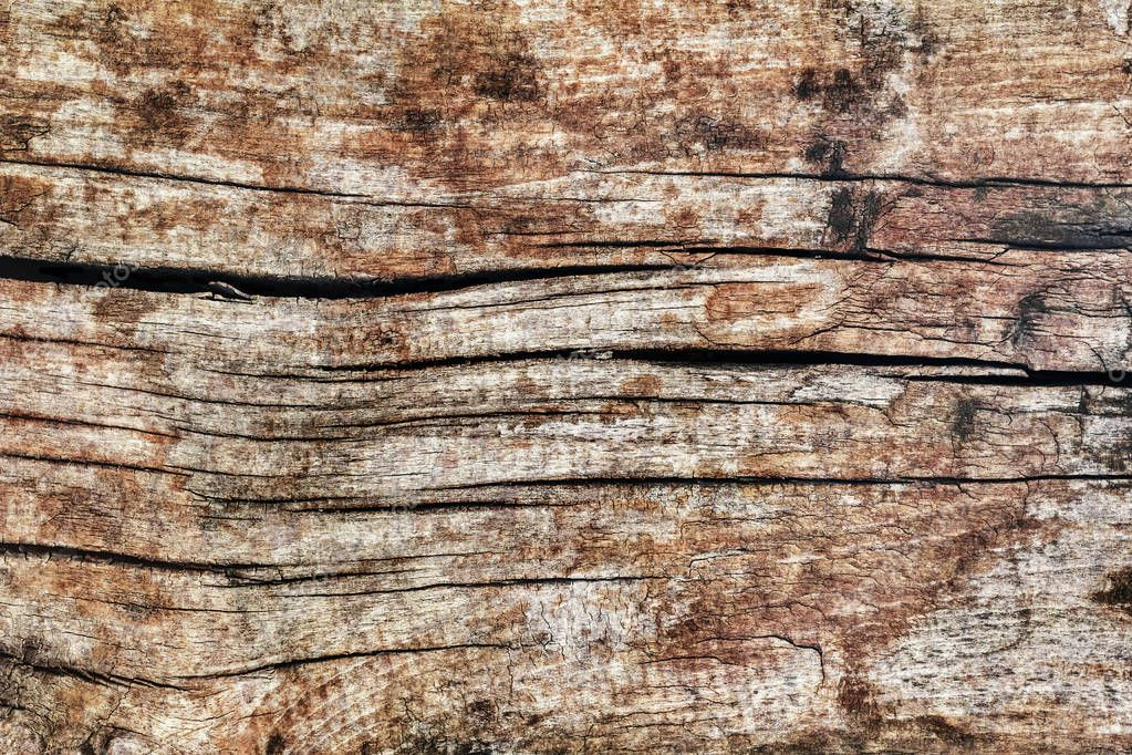 Old Weathered Rotten Cracked Coarse Pine Wood Grunge Texture