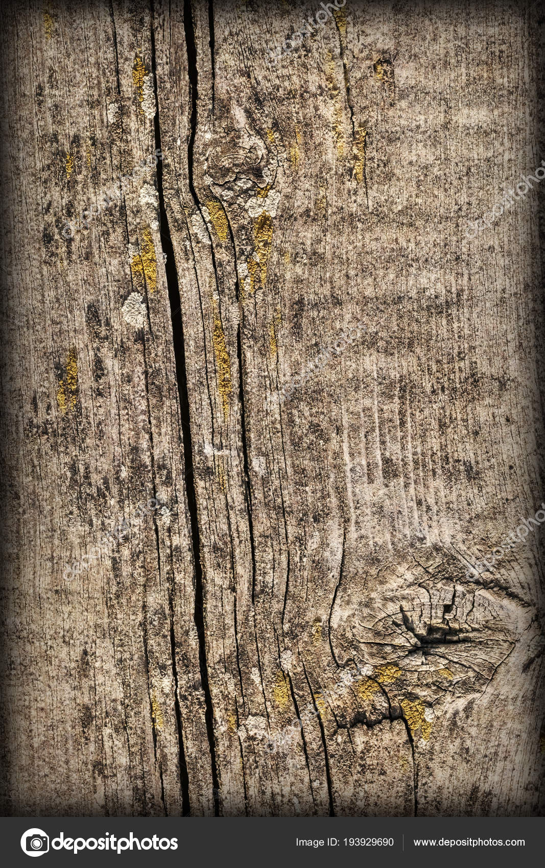 Alte Verwitterte Geknackt Verknotete Kiefer Holz Diele Vignette