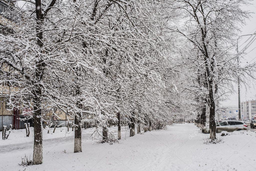 Winter park in blizzard.